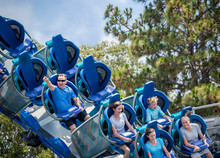 Young Family Having Fun Riding A Rollercoaster At A Theme Park. Screaming, Laughing And Enjoying A Fun Summer Vacation Together.