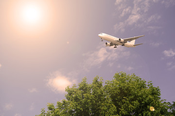 Airliner over green trees against the sky sunset.