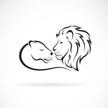 Male Lion And Female Lion Desi...