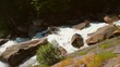 This panning video shows the top view of a wild but scenic white water river running through forest rocks.