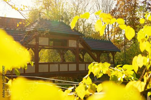 Wall Murals Yellow Autumn park bridge / Autumn park river bridge landscape