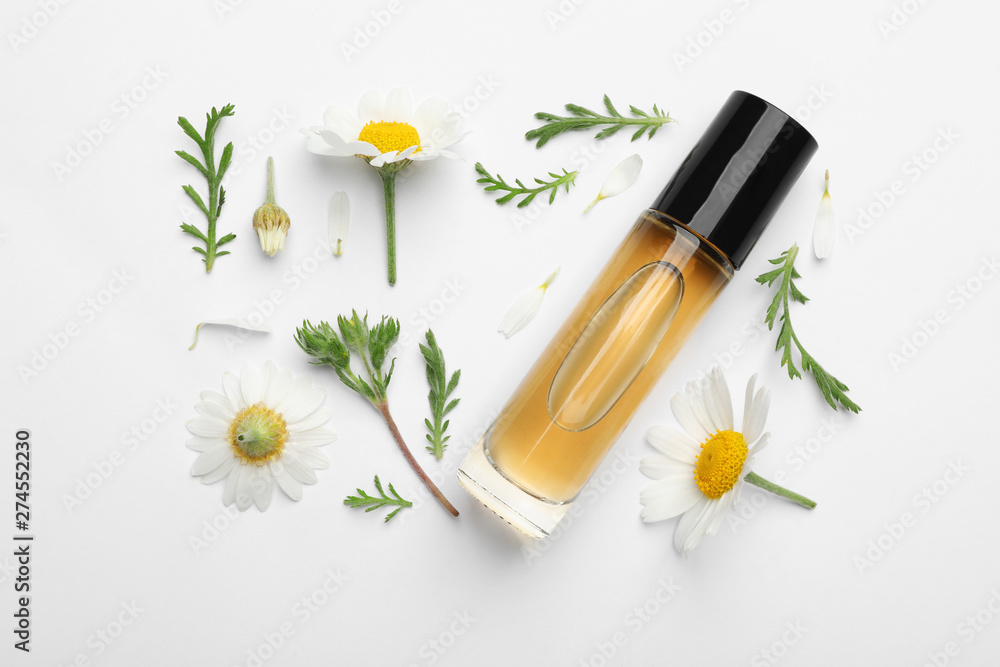 Fototapeta Composition with chamomile flowers and cosmetic bottle of essential oil on white background, top view