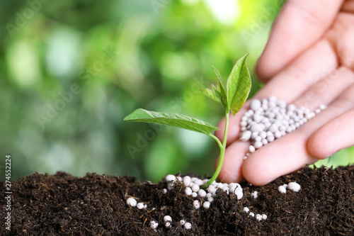 Cadres-photo bureau Jardin Woman fertilizing plant in soil against blurred background, closeup with space for text. Gardening time