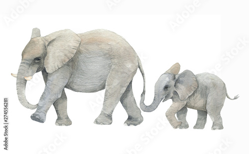 Photo  Hand drawn watercolor illustration with cute elephants