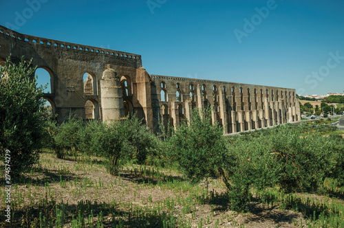 Fotografija Olive trees in front aqueduct with arches near road to Elvas