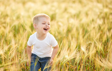 Cute Child Walking In The Wheat Golden Field On A Sunny Summer Day. Little Boy  Smiling And Happy. Nature In The Country