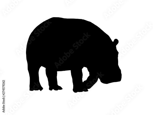 Graphical vector silhouette of hippo isolated on white,illustration Wallpaper Mural