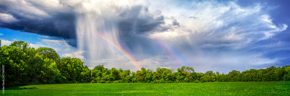 Fototapety, obrazy: Rain And Rainbow Over Rural Landscape With Trees And Plant Crop