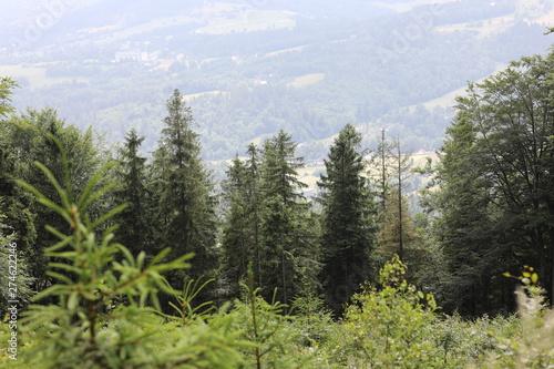 Szlaki górskie © marriaci_photo