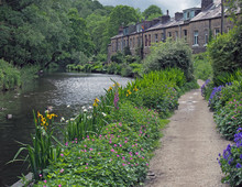 A Canal Path Surrounded By Summer Flowers With A Row Of Old Stone Houses At Eastwood In Hebden Bridge West Yorkshire