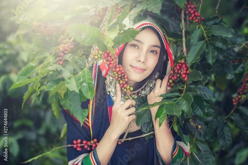 Fényképezés Portrait of beautiful young asian lady Akha tribe,Akha hill picking arabica coff