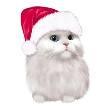 White Cat In A Christmas Hat. Illustration For New Year's And Christmas Cards