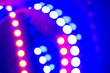 canvas print picture - Purple blue neon bokeh lights. Abstract background of 80s colors