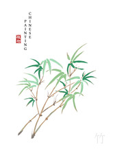 Watercolor Chinese Ink Paint Art Illustration Nature Plant From The Book Of Songs Bamboo. Translation For The Chinese Word : Plant And Bamboo