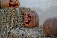 Halloween Pumpkin On The Hay