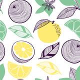 Wzór cytrusów. Owoc, liść, plasterek, kwiat pomarańczy, limonki, cytryny. Wektorowa ręka rysująca ilustracja ustawiająca w nowożytnym modnym mieszkaniu projektuje dla sieci, drukuje plakaty i tapety - 274694615