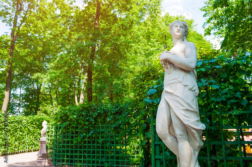 Cuadros en Lienzo Summer garden, St Petersburg, Russia