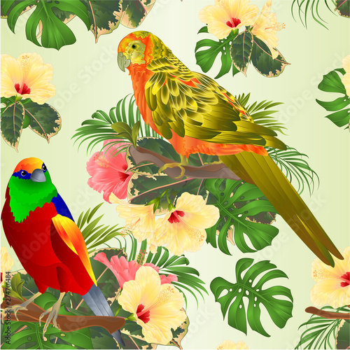 Fotobehang Papegaai Seamless texture tropical bird and sun Conure Parrot with tropical flowers hibiscus palm,philodendron watercolor background vintage vector illustration editable hand draw