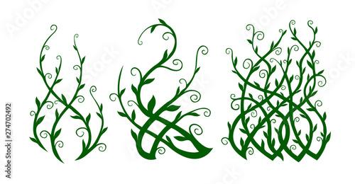 Photo Green clip arts with ornate liana shapes