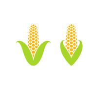 Corn. Icon Set. Isolated Corn ...