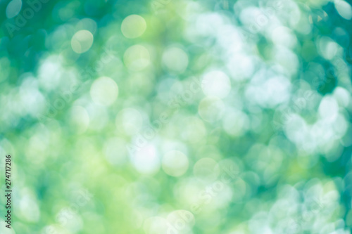Fotografiet  abstract blur green color for background, blurred and defocused effect spring co