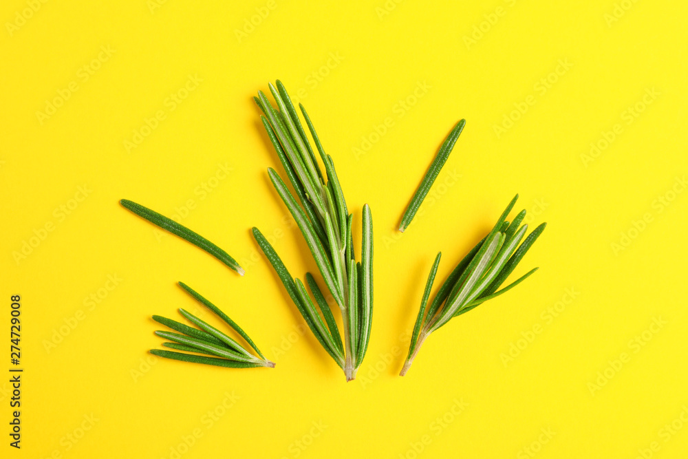Fototapety, obrazy: Flat lay composition with rosemary on yellow background, space for text