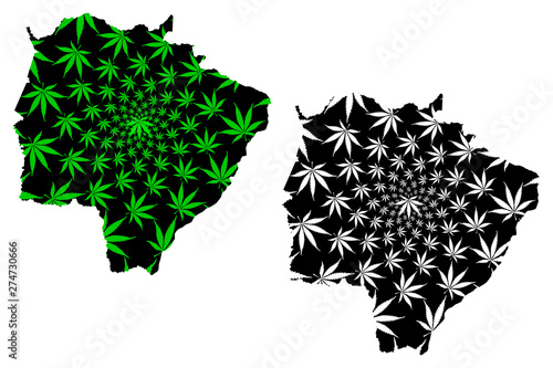 Fotografija  Mato Grosso do Sul (Brazil, Federated state, Federative Republic of Brazil) map is designed cannabis leaf green and black, Mato Grosso do Sul map made of marijuana (marihuana,THC) foliage