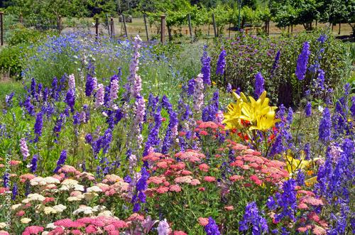 Tableau sur Toile Colorful delphinium and lily garden
