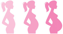 Pregnant Female Silhouettes An...