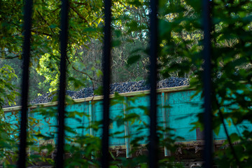 Railway carriage loaded with coal behind a fence of black metal rods.