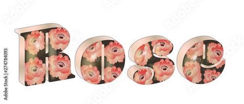 Fotografie, Obraz  3D letters, pink roses, rose word with rose pattern