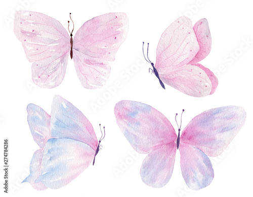 Fotografiet  Butterflies hand drawn watercolor raster illustrations set
