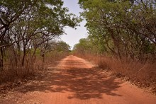 Gambian Countryside Road