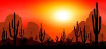 Stony Desert With Cacti 1. Sunset In The Desert. Silhouettes Of Stones, Cacti And Plants. Desert Landscape With Cacti. The Stony Desert.