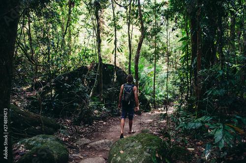 Mossman Gorge, Port Douglas, Cairns Queensland Australia Poster Mural XXL