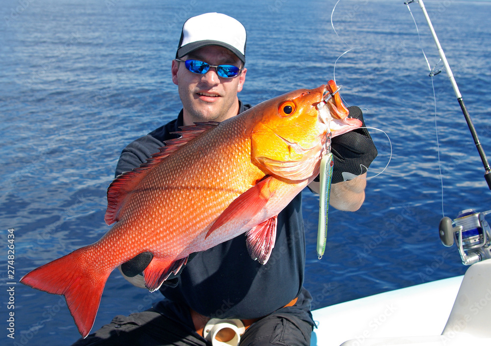 Fototapety, obrazy: fisherman holding a big red snapper fish, deep sea fishing, lure fishing, big game fishing. Catch of fish