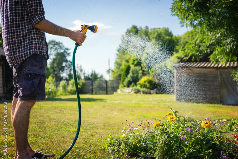 Fototapety, obrazy: Hipster young man watering plants in a country house, summer and garden care