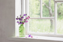 Aquilegia Flowers In Green Vase On Windowsill