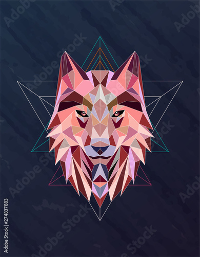 Colorful abstract polygonal wolf head Fototapeta