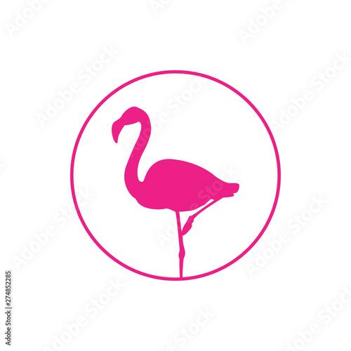 Icono plano flamenco en círculo lineal en color rosa