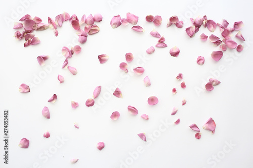 Foto op Aluminium Bloemenwinkel pink and red petals background / abstract aroma background, spa pink petals