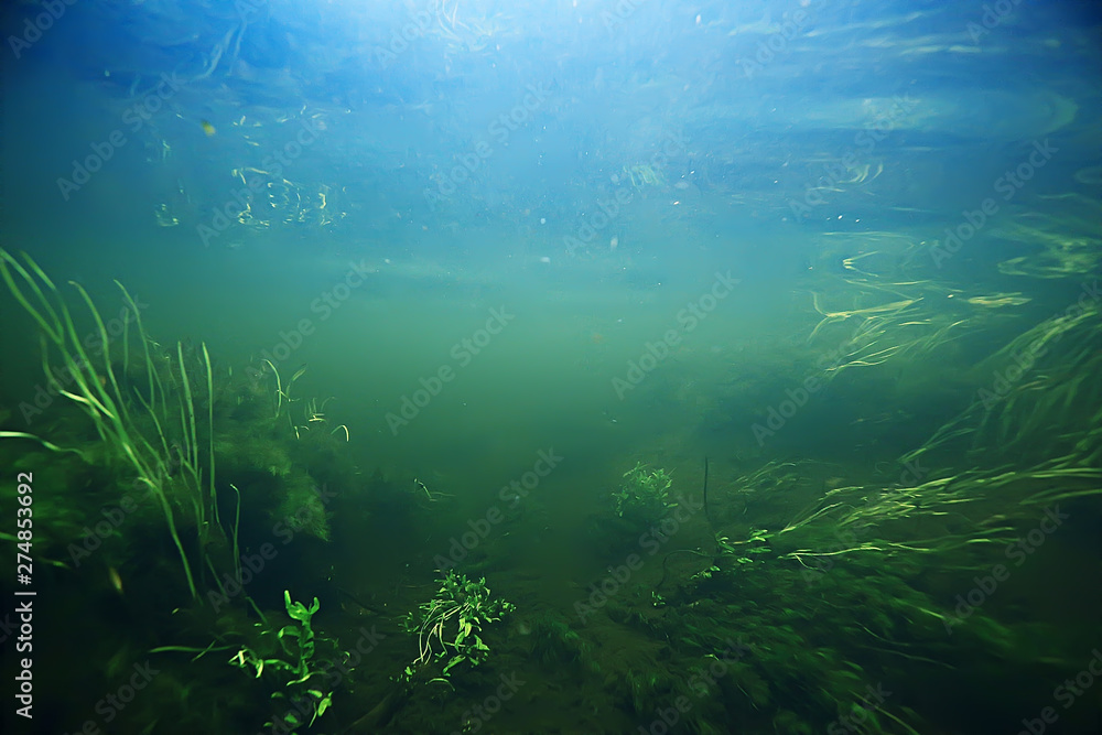 Fototapety, obrazy: underwater mountain clear river / underwater photo in a freshwater river, fast current, air bubbles by water, underwater ecosystem landscape
