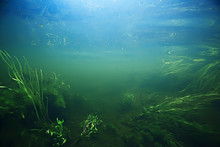 Underwater Mountain Clear River / Underwater Photo In A Freshwater River, Fast Current, Air Bubbles By Water, Underwater Ecosystem Landscape