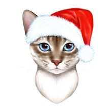 Cat In A Christmas Hat. Illust...