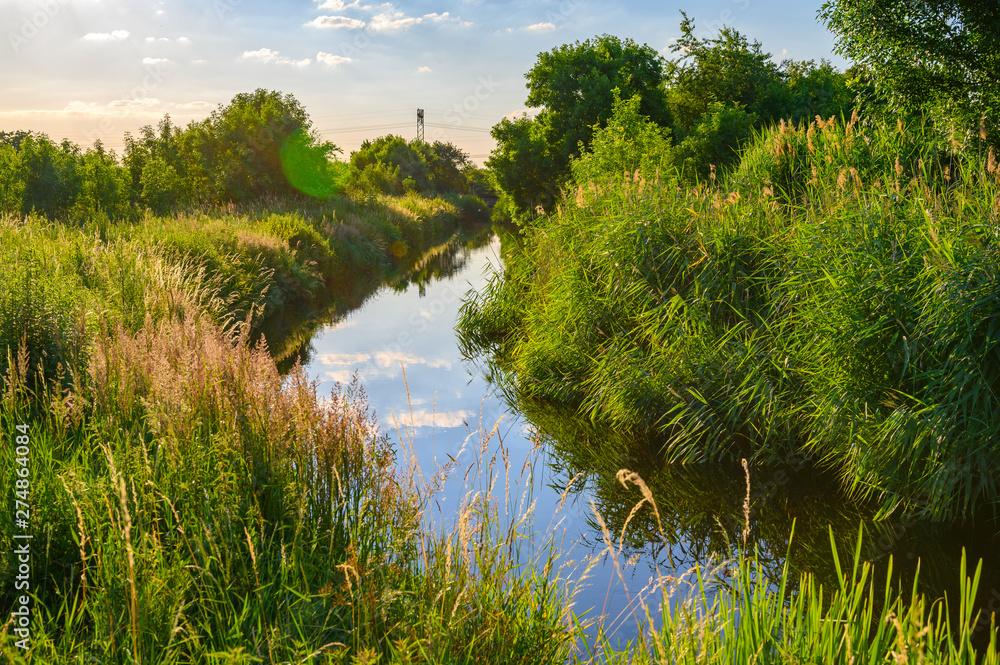 Fototapeta Blue sky over a little creek in the surrounding countryside of Berlin, Germany.