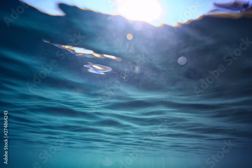 Cuadros en Lienzo ocean water blue background underwater rays sun / abstract blue background natur