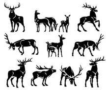 Red Deer Group. Black Silhouette. Isolated On A White Background