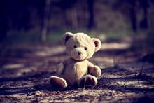 Teddy Bear Sitting In The Midd...