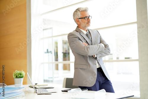 Poster Ecole de Danse Mature businessman standing at desk in modern office