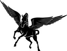 Pegasus Front View